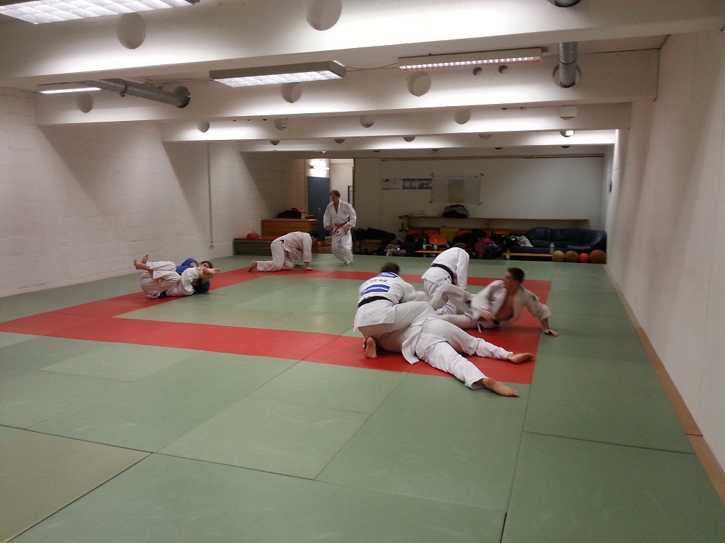Training Januar 2015